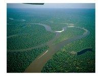 sungai amason