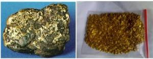 Gambar Bijih emas dan butiran emas yang diperoleh dengan cara pendulangan