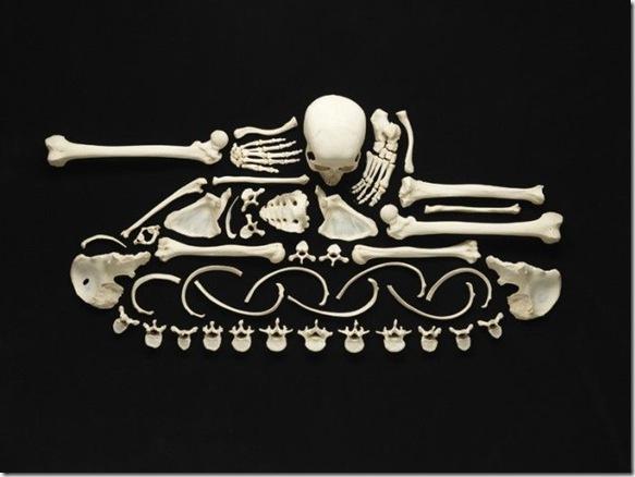 seni dari tulang manusia (2)
