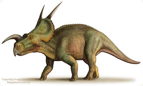 Einiosaurus_procurvicornis_by_atrox1
