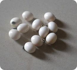 Rosary Pea (Kacang Polong Rosary) putih