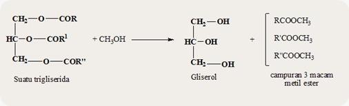 turunan asam karboksilat ester 2