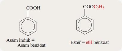 turunan asam karboksilat ester 5