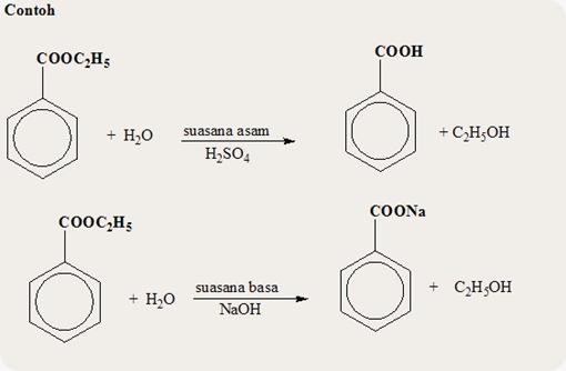turunan asam karboksilat ester