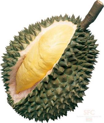 briket kulit durian g